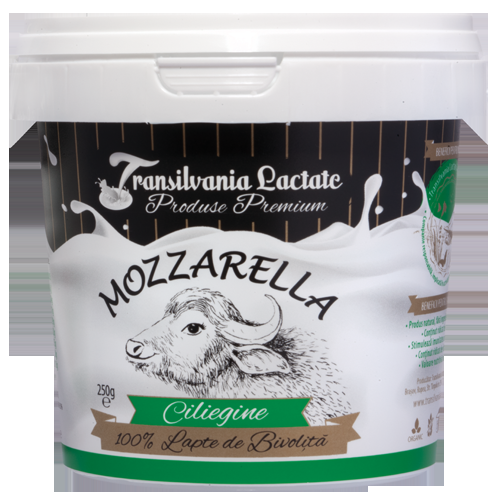 Mozzarella (ciliegine - 8 bile mici) 250g-big